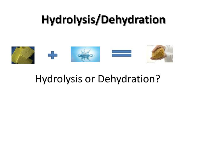 Hydrolysis dehydration