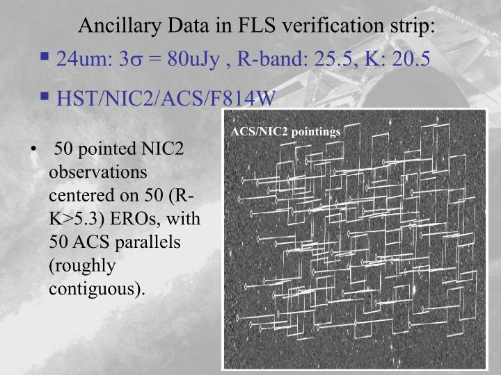 Ancillary Data in FLS verification strip: