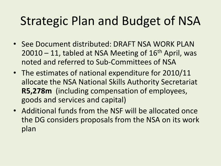 Strategic Plan and Budget of NSA