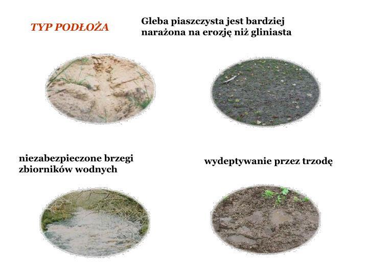 Gleba piaszczysta jest bardziej naraona na erozj ni gliniasta