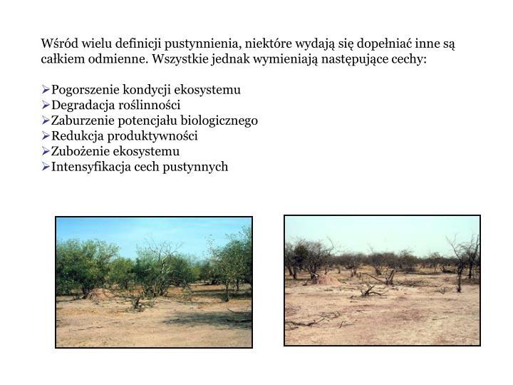 Wrd wielu definicji pustynnienia, niektre wydaj si dopenia inne s cakiem odmienne. Wszystkie jednak wymieniaj nastpujce cechy: