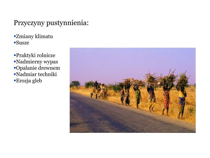 Przyczyny pustynnienia: