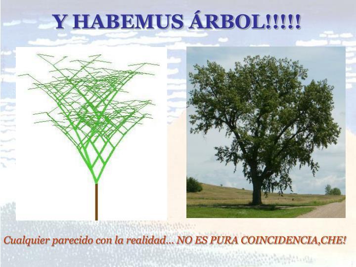 Y HABEMUS ÁRBOL!!!!!