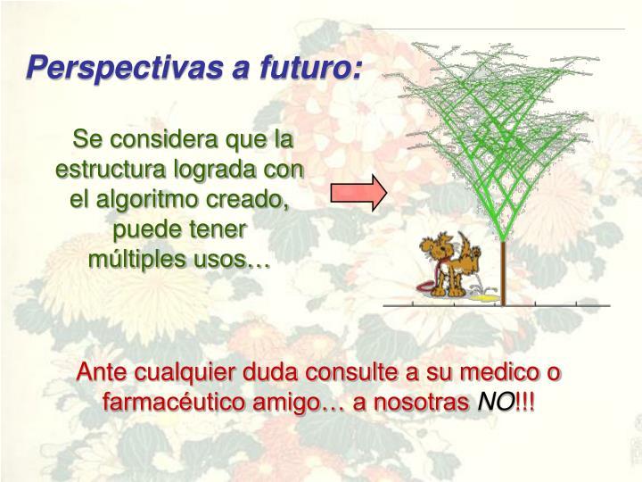 Perspectivas a futuro: