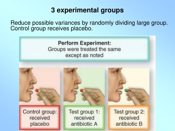 3 experimental groups