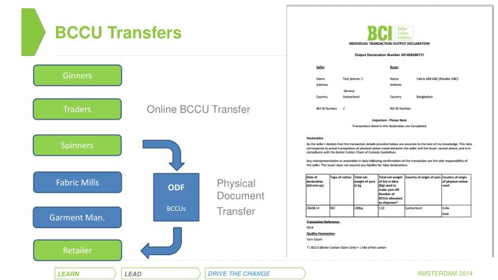 BCCU Transfers