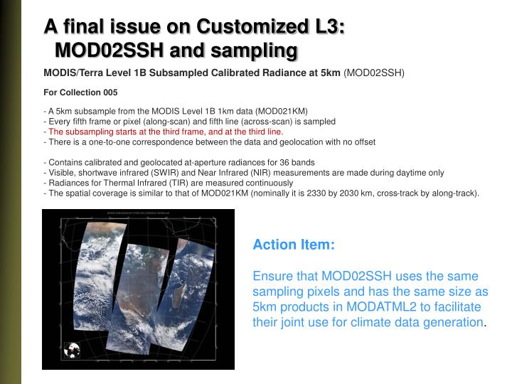 A final issue on Customized L3: