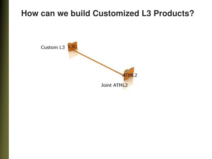 How can we build Customized L3 Products?