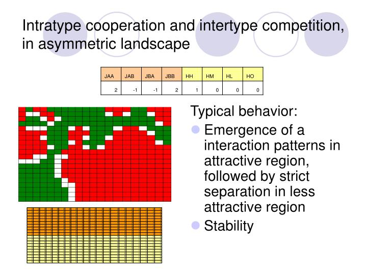 Intratype cooperation and intertype competition, in asymmetric landscape