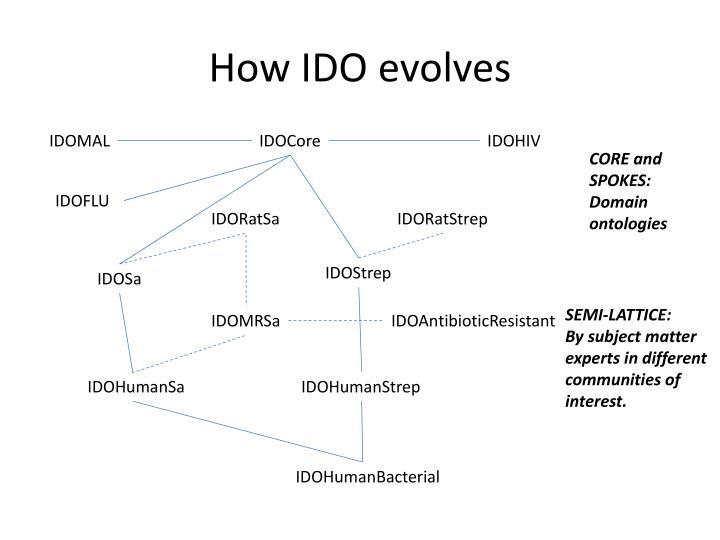 How IDO evolves