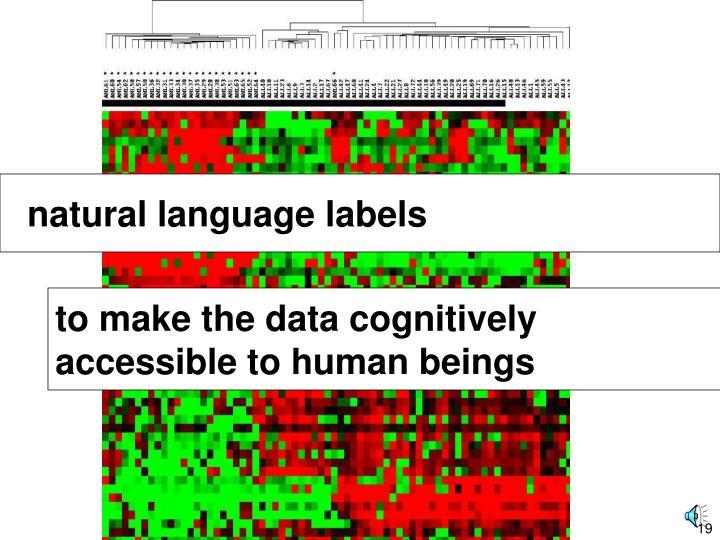 natural language labels