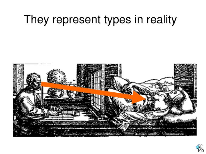 They represent types in reality