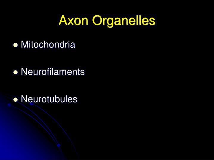 Axon Organelles