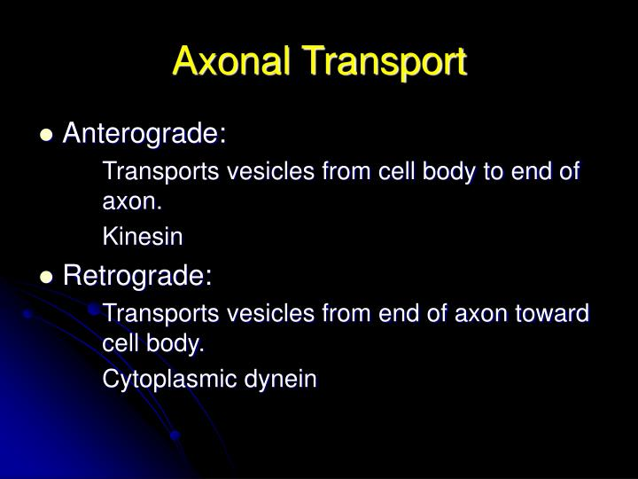 Axonal Transport
