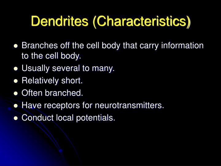 Dendrites (Characteristics)