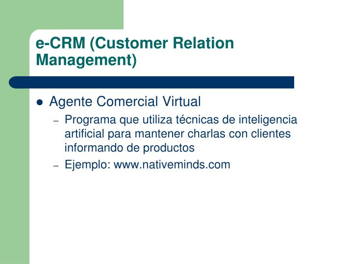 e-CRM (Customer Relation Management)