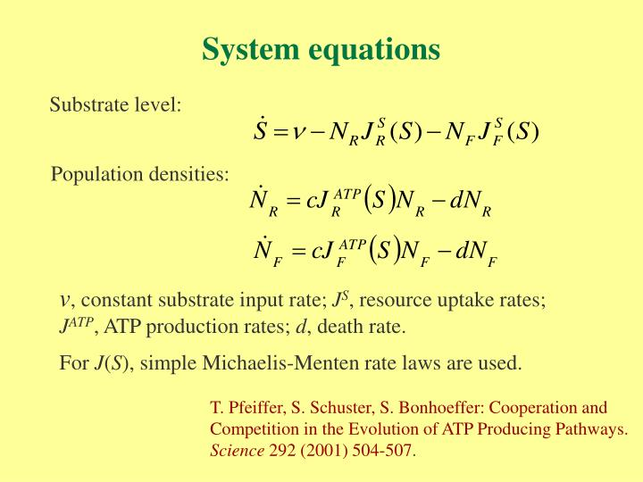 System equations