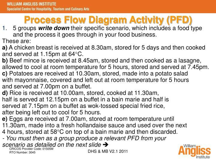 Process Flow Diagram Activity (PFD)