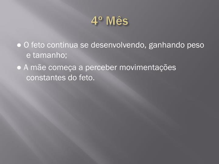 4º Mês