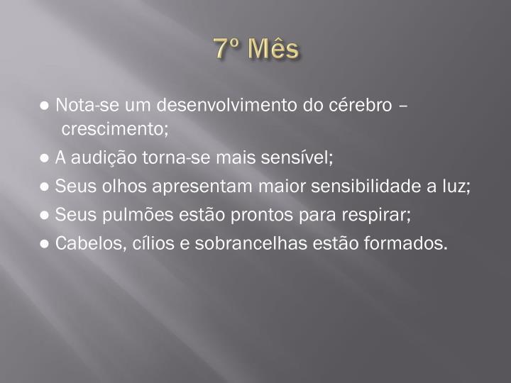 7º Mês