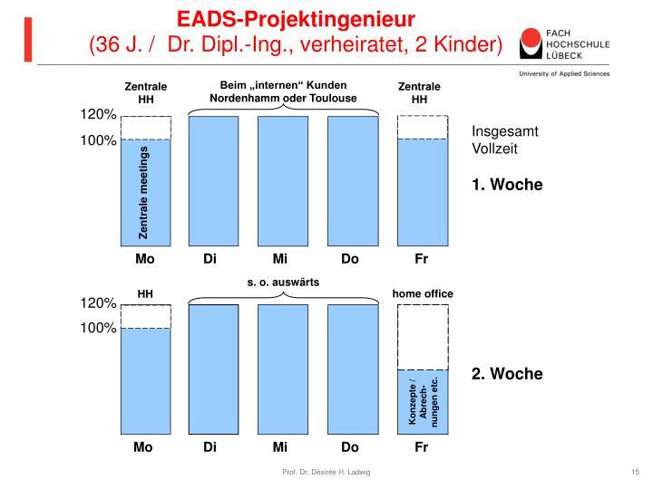 EADS-Projektingenieur