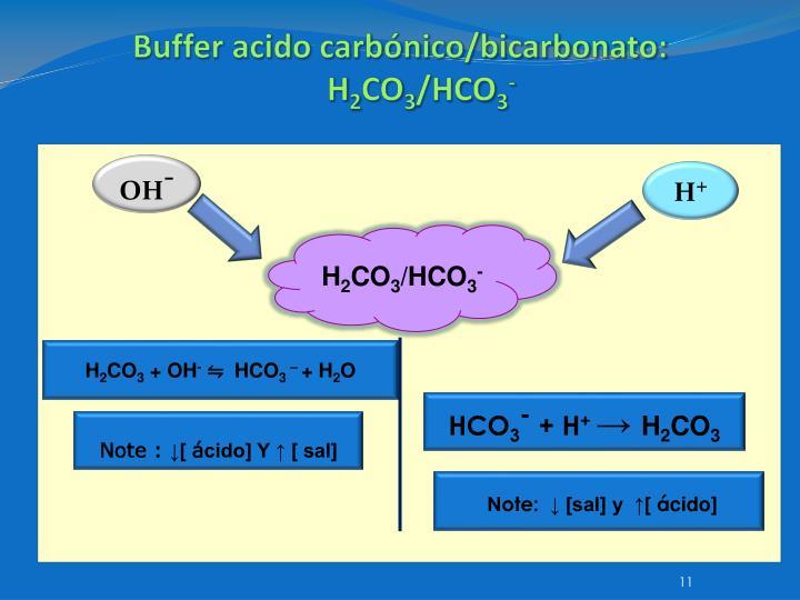 Buffer acido carbónico/bicarbonato: H