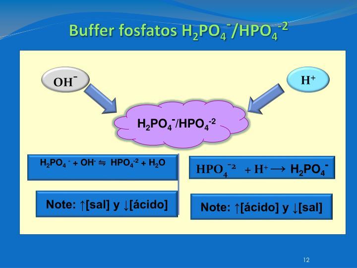 Buffer fosfatos H