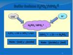 buffer fosfatos h 2 po 4 hpo 4 2