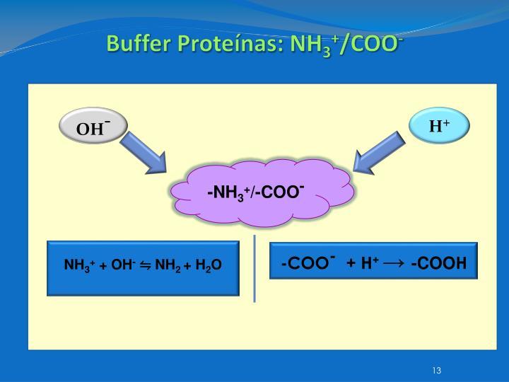 Buffer Proteínas: NH
