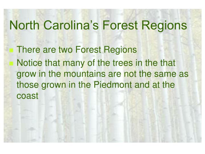 North Carolina's Forest Regions