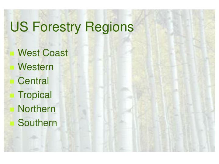 US Forestry Regions
