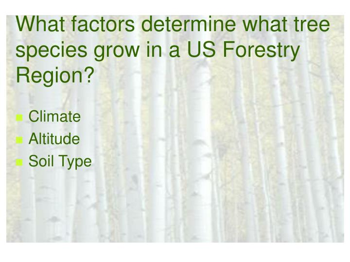 What factors determine what tree species grow in a US Forestry Region?
