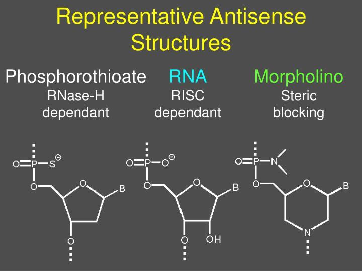 Representative Antisense Structures