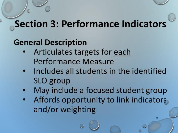 Section 3: Performance Indicators
