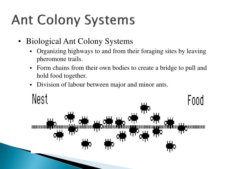 Ant Colony Systems