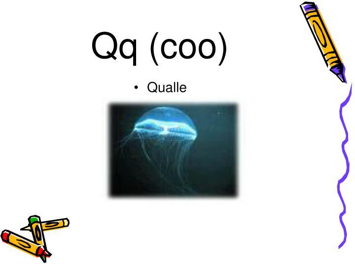Qq (coo)