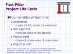 first pillar project life cycle1