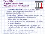third pillar supply chain analysis will a response be effective