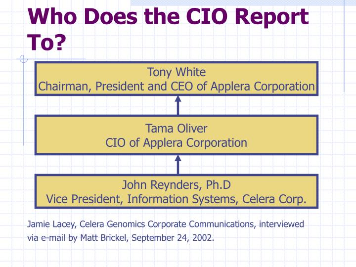 Who Does the CIO Report To?