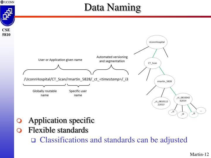 Data Naming