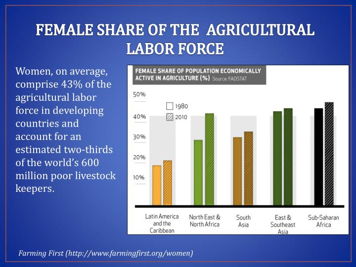 FEMALE SHARE OF THE  AGRICULTURAL LABOR FORCE