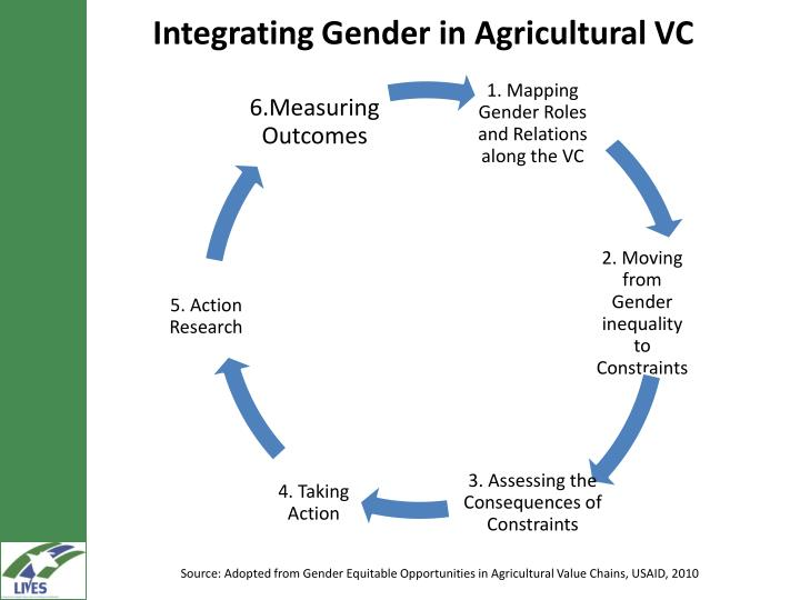 Integrating Gender in Agricultural VC