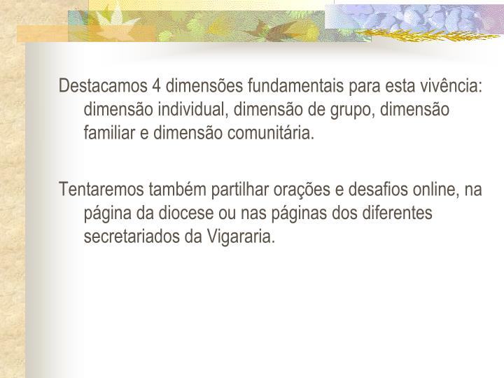 Destacamos 4 dimenses fundamentais para esta vivncia: dimenso individual, dimenso de grupo, dimenso familiar e dimenso comunitria.