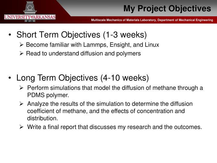 My Project Objectives