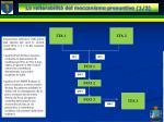 la reiterabilit del meccanismo presuntivo 1 2