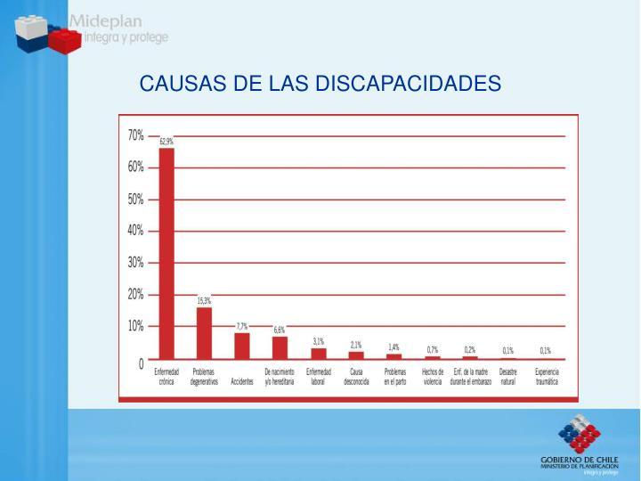 CAUSAS DE LAS DISCAPACIDADES
