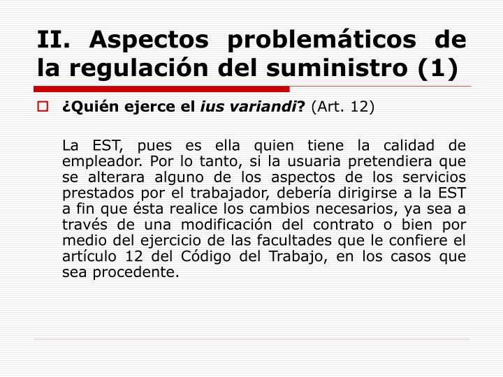II. Aspectos problemáticos de la regulación del suministro (1)