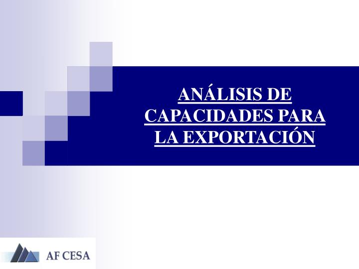 ANÁLISIS DE CAPACIDADES PARA