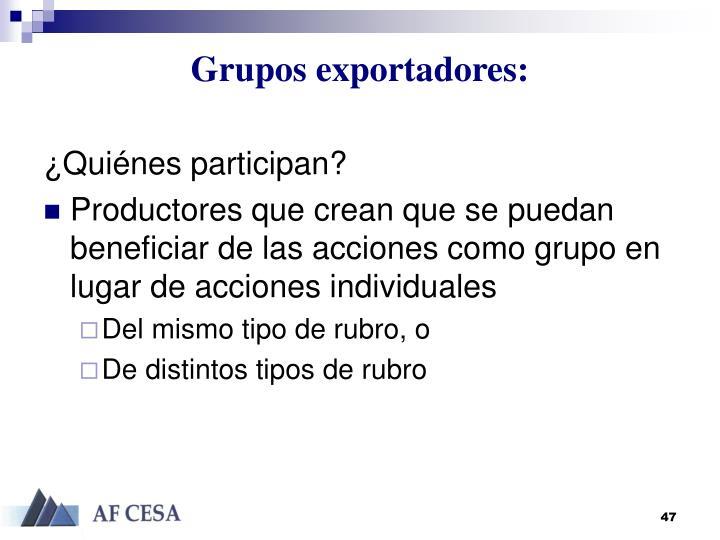 Grupos exportadores:
