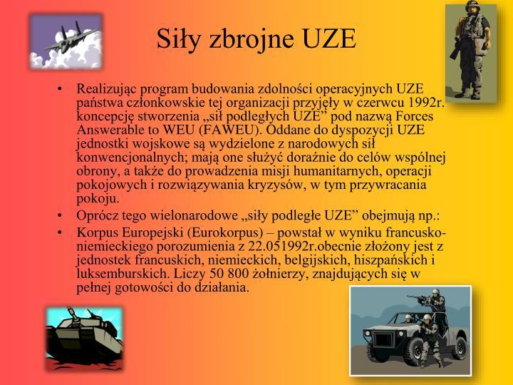 Siły zbrojne UZE